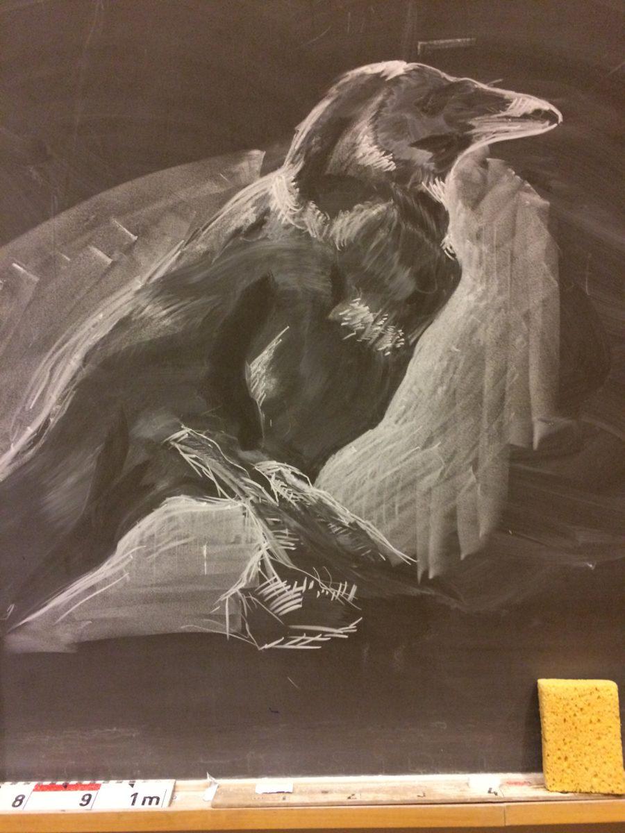 Crow by Terhi Nieminen.