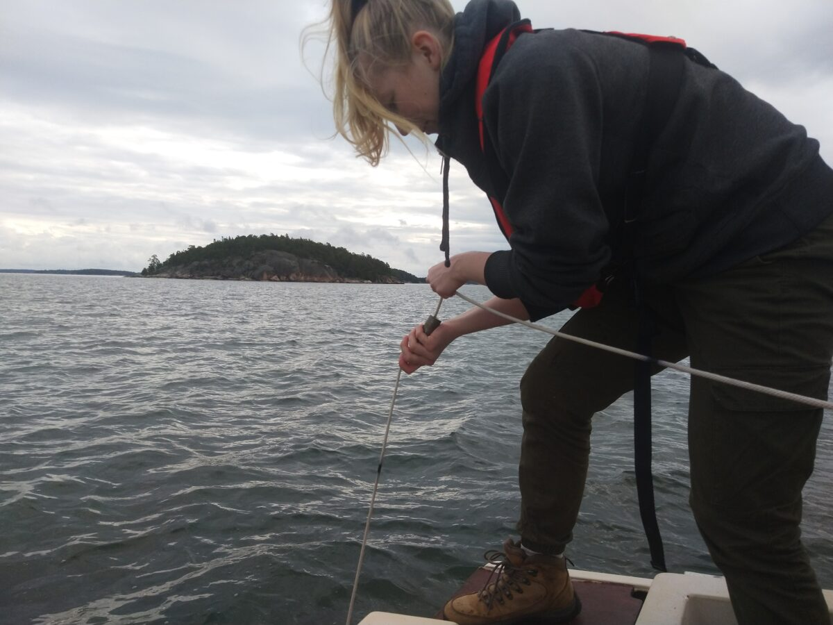 Collecting plankton samples. Photo Arja Renell.